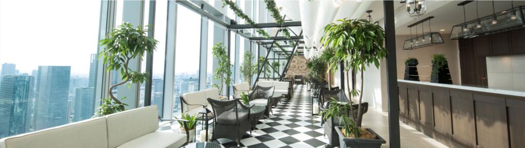 梅田のおすすめプロポーズスポットでThe 33 Tea&Bar Terrace