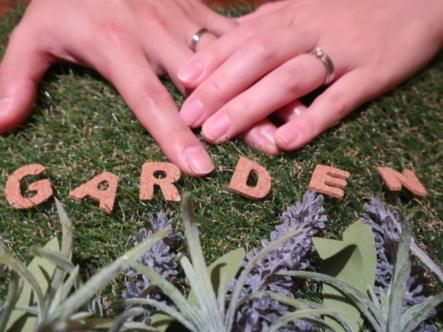 FISCHERの結婚指輪 兵庫県/大阪府