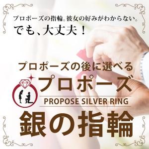 シルバーのリングでプロポーズの後から選べる婚約指輪