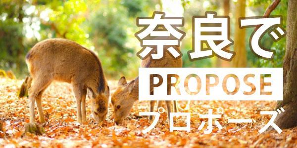 奈良のおすすめプロポーズスポットバナー