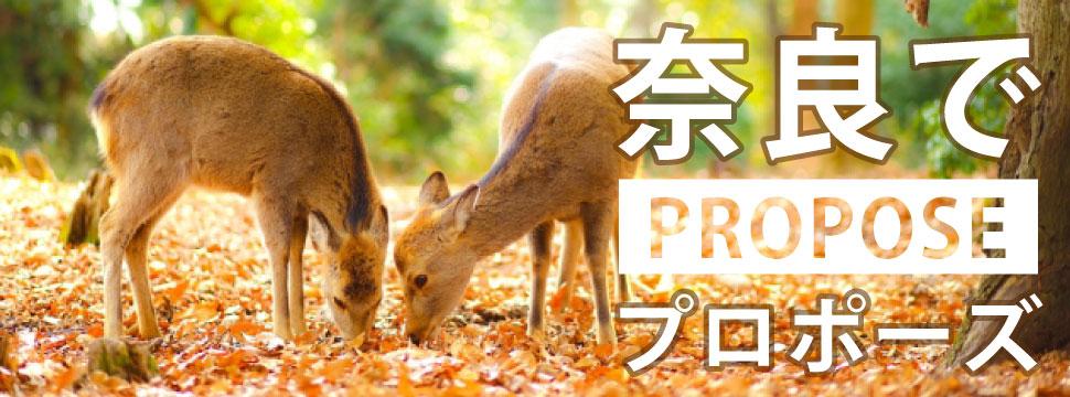 奈良のおすすめプロポーズスポットイメージ