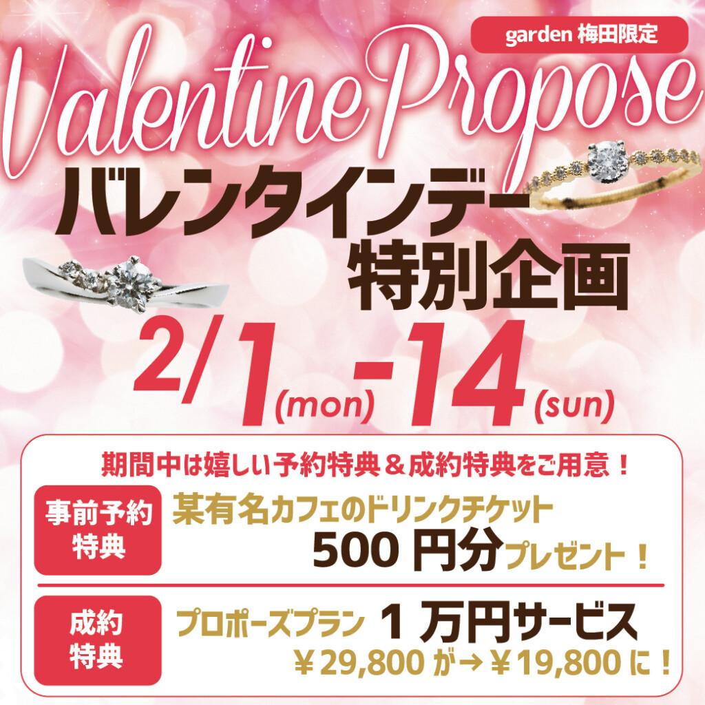 バレンタインデー特別企画,サプライズプロポーズ,エンゲージリング,婚約指輪