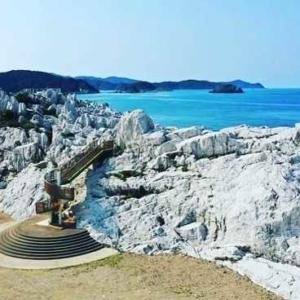 大阪のサプライズプロポーズ 白崎海洋公園
