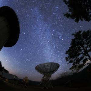 大阪gardenのサプライズプロポーズ 星の動物園 みさと天文台