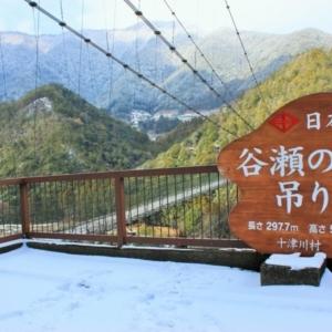 大阪gardenのサプライズプロポーズ 谷瀬の吊り橋