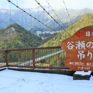 大阪のサプライズプロポーズ 谷瀬の吊り橋