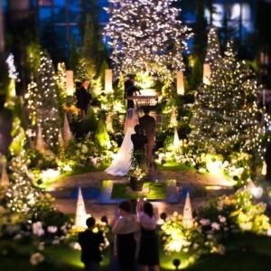大阪gardenのサプライズプロポーズ 淡路夢舞台温室 奇跡の星の植物館