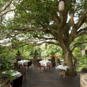 大阪gardenのサプライズプロポーズ La Terrasse