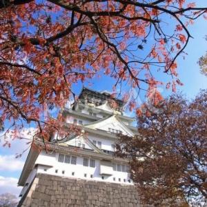 秋のプロポーズに人気の大阪城公園