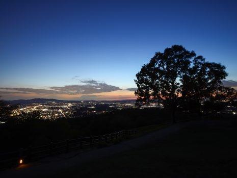 夜景でプロポーズするなら若草山