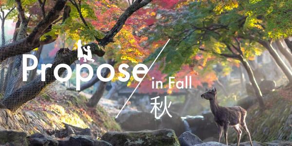 秋のプロポーズの画像